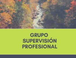 Grupo supervision profesional